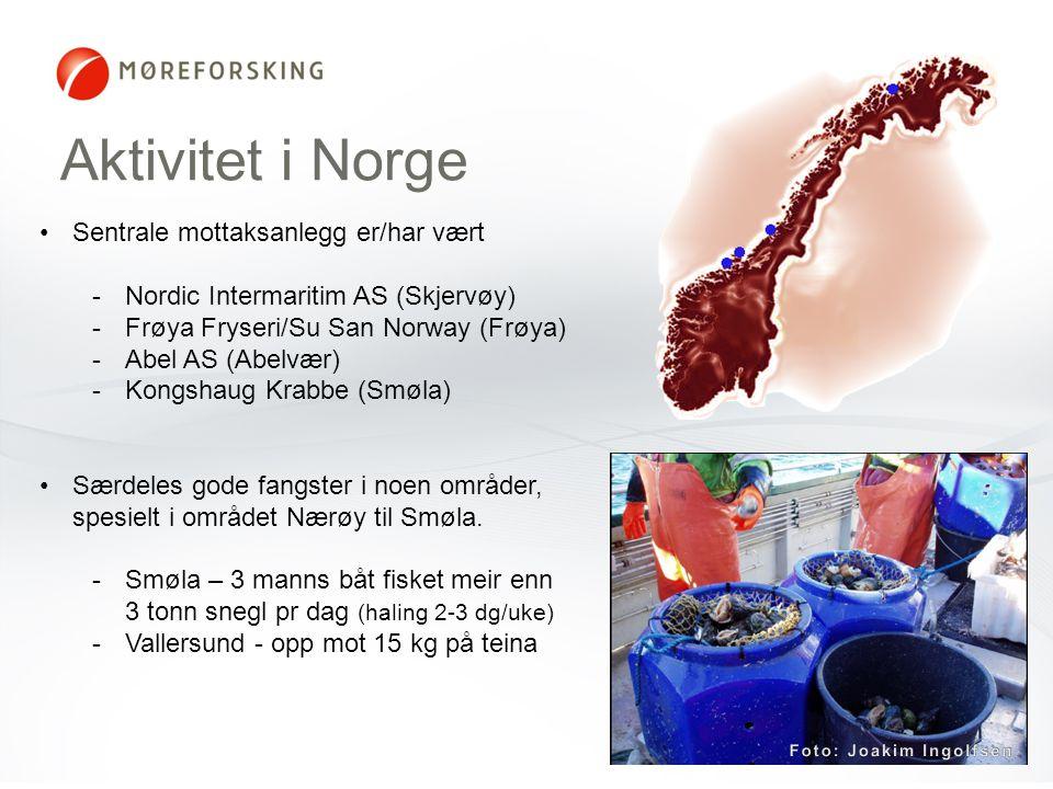Aktivitet i Norge •Sentrale mottaksanlegg er/har vært -Nordic Intermaritim AS (Skjervøy) -Frøya Fryseri/Su San Norway (Frøya) -Abel AS (Abelvær) -Kong