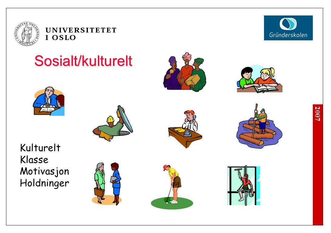 2007 Sosialt/kulturelt Kulturelt Klasse Motivasjon Holdninger