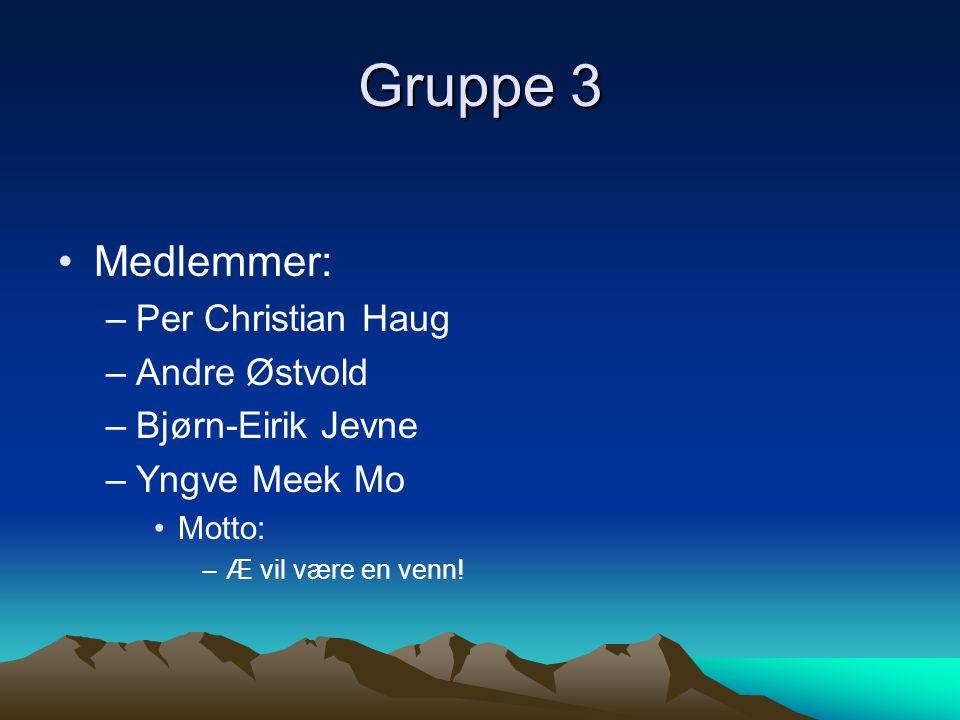 Gruppe 3 •Medlemmer: –Per Christian Haug –Andre Østvold –Bjørn-Eirik Jevne –Yngve Meek Mo •Motto: –Æ vil være en venn!