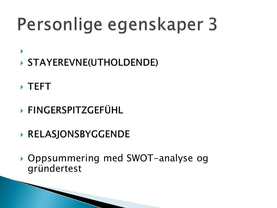   STAYEREVNE(UTHOLDENDE)  TEFT  FINGERSPITZGEFÜHL  RELASJONSBYGGENDE  Oppsummering med SWOT-analyse og gründertest
