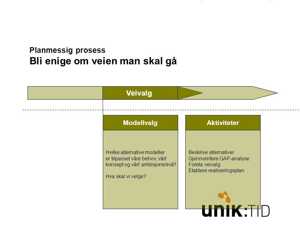 Planmessig prosess Bli enige om veien man skal gå Veivalg Hvilke alternative modeller er tilpasset våre behov, vårt konsept og vårt ambisjonsnivå.
