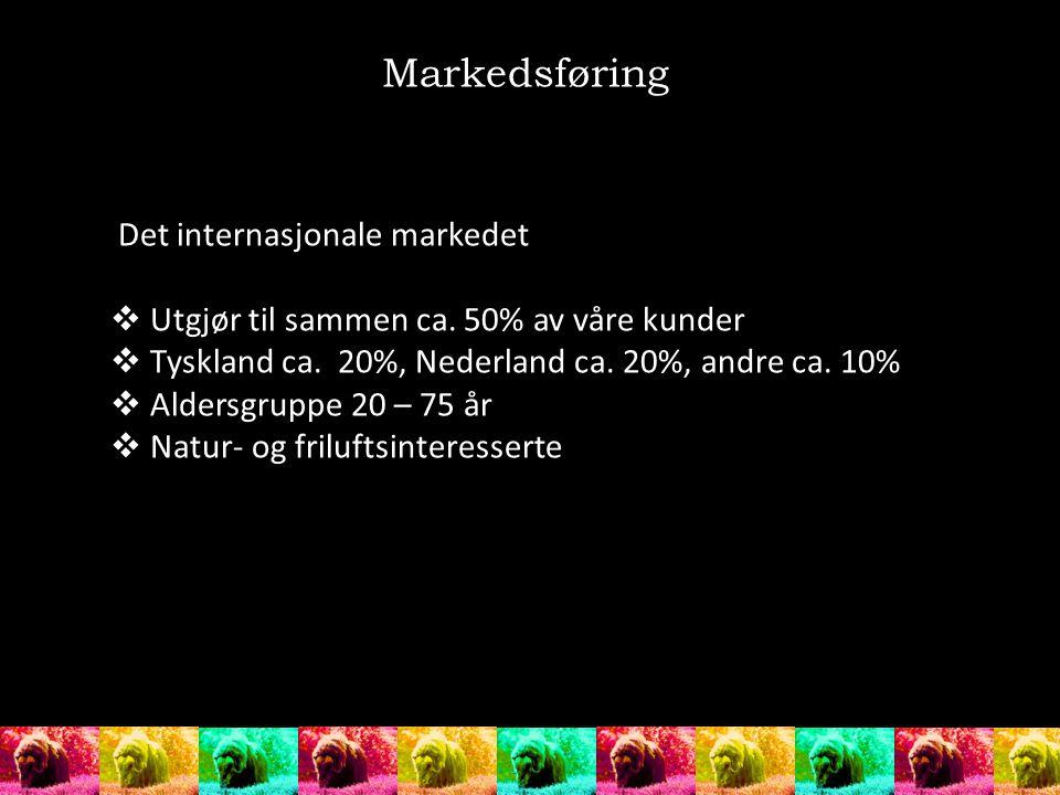 Det internasjonale markedet  Utgjør til sammen ca. 50% av våre kunder  Tyskland ca. 20%, Nederland ca. 20%, andre ca. 10%  Aldersgruppe 20 – 75 år