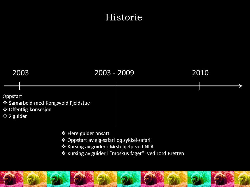 Historie 20032003 - 20092010 Oppstart  Samarbeid med Kongsvold Fjeldstue  Offentlig konsesjon  2 guider  Flere guider ansatt  Oppstart av elg-saf