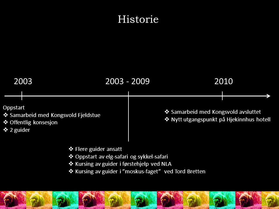Historie 20032003 - 20092010 Oppstart  Samarbeid med Kongsvold Fjeldstue  Offentlig konsesjon  2 guider  Samarbeid med Kongsvold avsluttet  Nytt