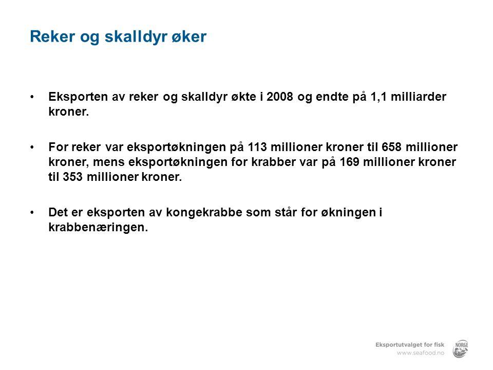 Reker og skalldyr øker •Eksporten av reker og skalldyr økte i 2008 og endte på 1,1 milliarder kroner.