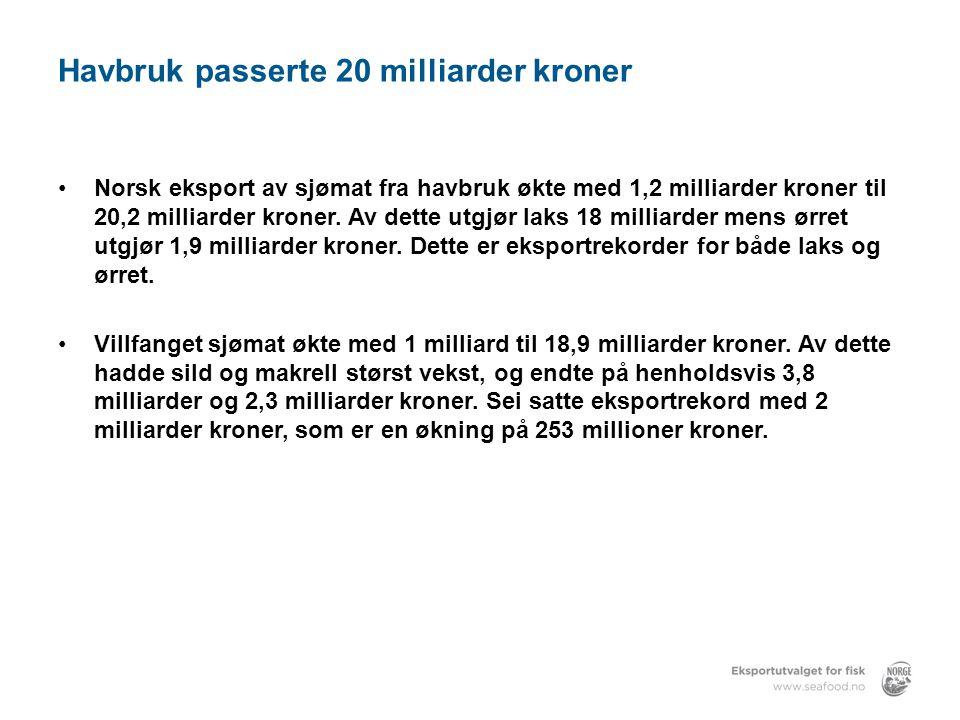 Havbruk passerte 20 milliarder kroner •Norsk eksport av sjømat fra havbruk økte med 1,2 milliarder kroner til 20,2 milliarder kroner.