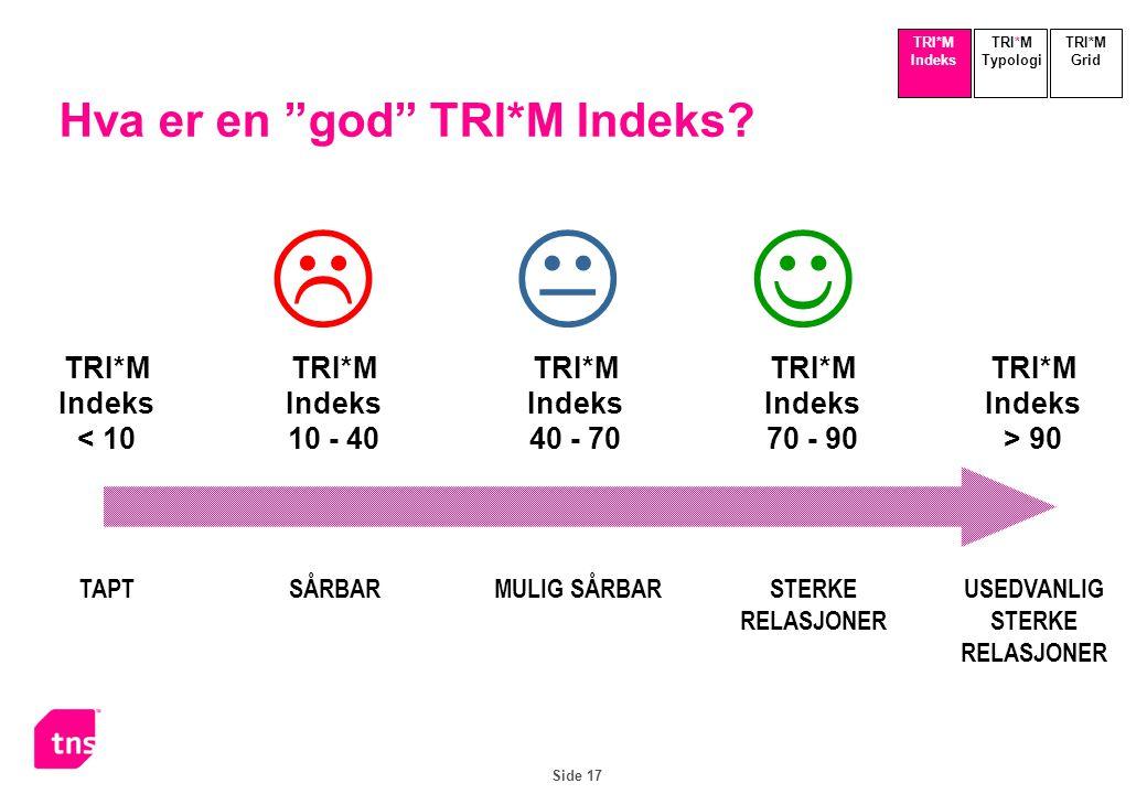 Side 17 Hva er en god TRI*M Indeks.