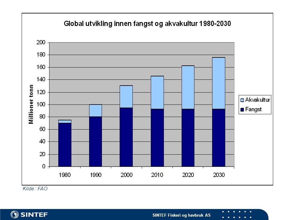 SINTEF Fiskeri og havbruk AS Kilde : FAO
