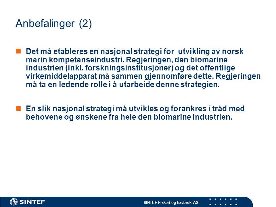 SINTEF Fiskeri og havbruk AS Anbefalinger (2)  Det må etableres en nasjonal strategi for utvikling av norsk marin kompetanseindustri. Regjeringen, de