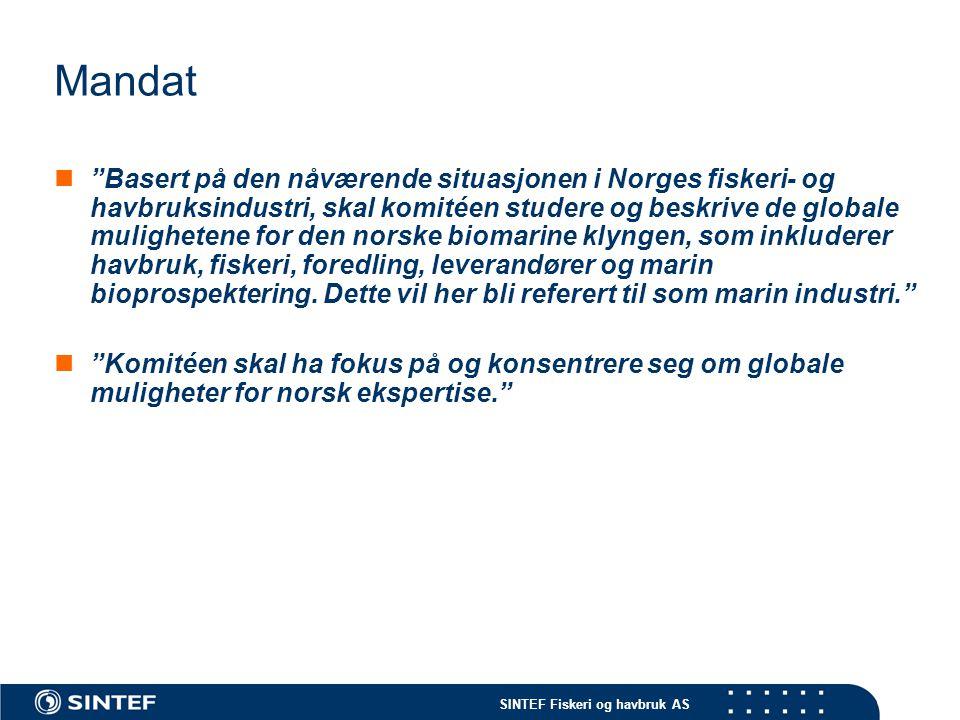 """SINTEF Fiskeri og havbruk AS Mandat  """"Basert på den nåværende situasjonen i Norges fiskeri- og havbruksindustri, skal komitéen studere og beskrive de"""
