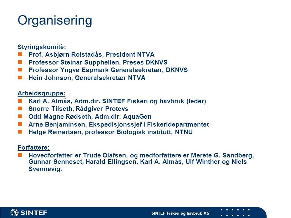 SINTEF Fiskeri og havbruk AS Organisering Styringskomitè:  Prof. Asbjørn Rolstadås, President NTVA  Professor Steinar Supphellen, Preses DKNVS  Pro