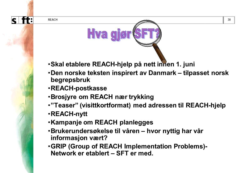 30REACH •Skal etablere REACH-hjelp på nett innen 1. juni •Den norske teksten inspirert av Danmark – tilpasset norsk begrepsbruk •REACH-postkasse •Bros