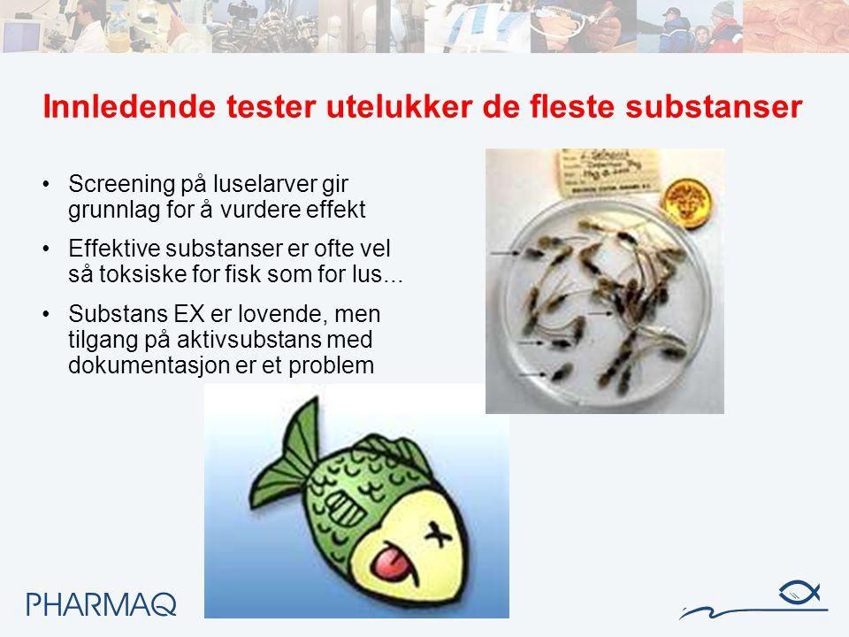 Innledende tester utelukker de fleste substanser •Screening på luselarver gir grunnlag for å vurdere effekt •Effektive substanser er ofte vel så toksi