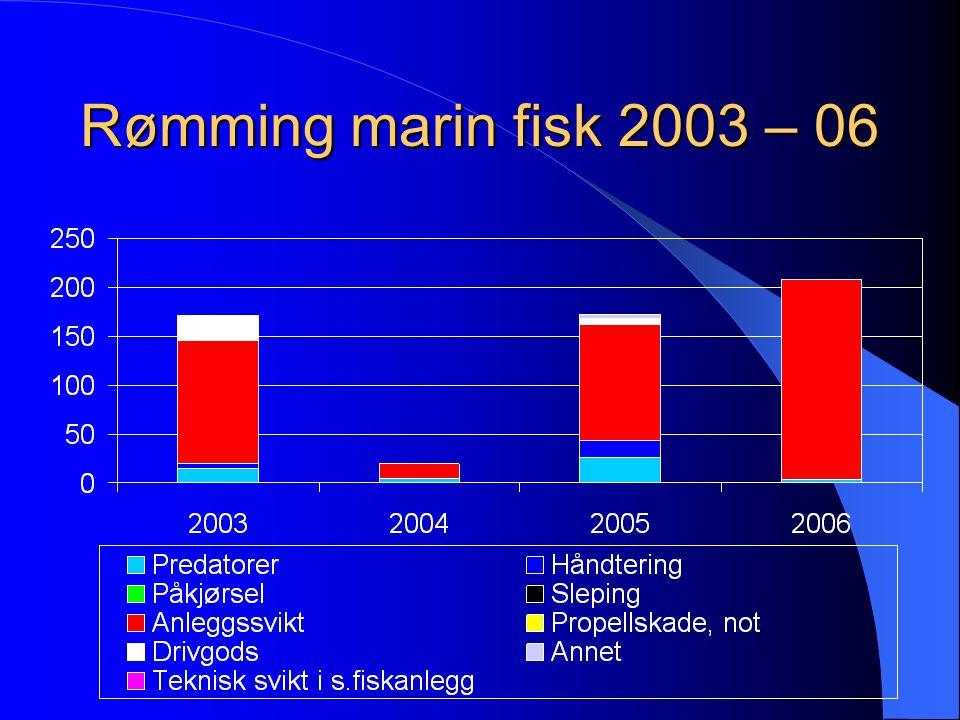 Rømming marin fisk 2003 – 06 571 978 Individer