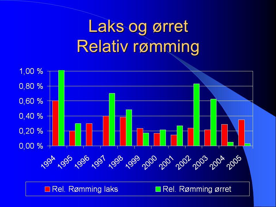 Beholdning og rømming av laks 1994 - 2005 0 / 00 - Millioner Tusen 8 0 / 00 - 4 0 / 00 - 2 0 / 00 -