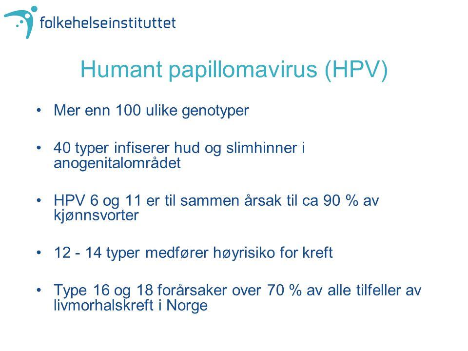 Humant papillomavirus (HPV) •Mer enn 100 ulike genotyper •40 typer infiserer hud og slimhinner i anogenitalområdet •HPV 6 og 11 er til sammen årsak ti