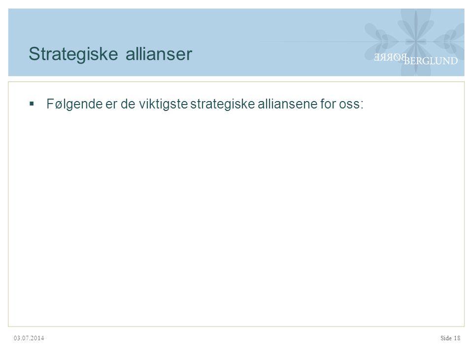 03.07.2014 Strategiske allianser  Følgende er de viktigste strategiske alliansene for oss: Side 18