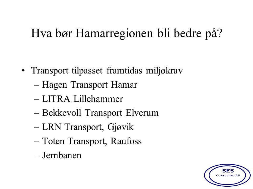 Hva bør Hamarregionen bli bedre på? •Transport tilpasset framtidas miljøkrav –Hagen Transport Hamar –LITRA Lillehammer –Bekkevoll Transport Elverum –L