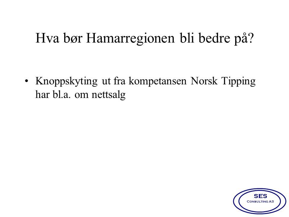 Hva bør Hamarregionen bli bedre på? •Knoppskyting ut fra kompetansen Norsk Tipping har bl.a. om nettsalg SES Consulting AS