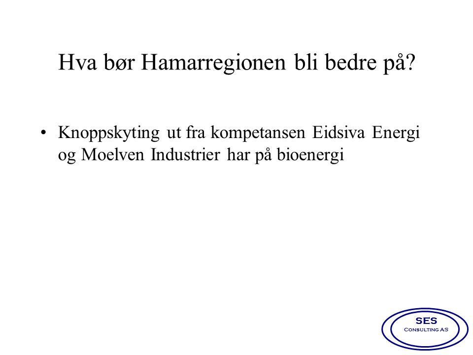 Hva bør Hamarregionen bli bedre på? •Knoppskyting ut fra kompetansen Eidsiva Energi og Moelven Industrier har på bioenergi SES Consulting AS