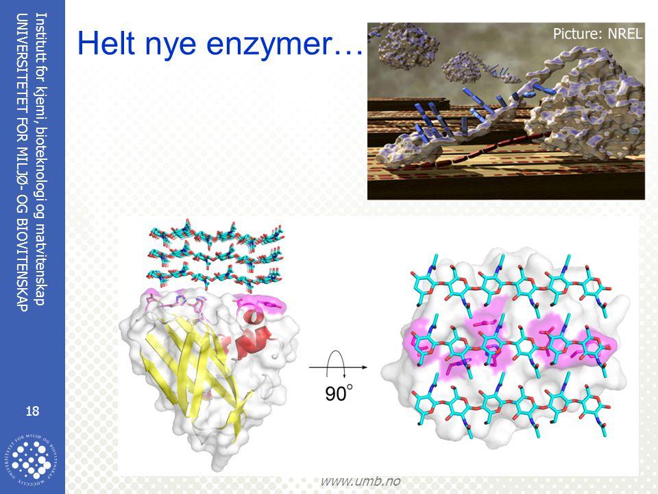 Institutt for kjemi, bioteknologi og matvitenskap 18 UNIVERSITETET FOR MILJØ- OG BIOVITENSKAP www.umb.no Helt nye enzymer………