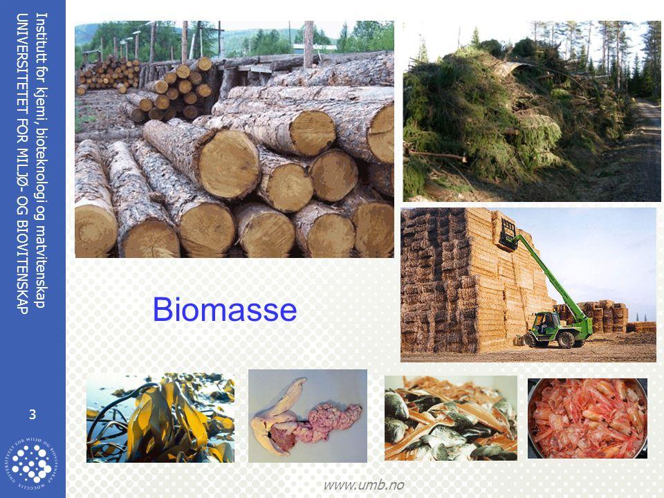 Institutt for kjemi, bioteknologi og matvitenskap 4 UNIVERSITETET FOR MILJØ- OG BIOVITENSKAP www.umb.no Bioenergi fra trevirke  Varme  Bio-oljer, Jet-fuel, diesel via termokjemiske prosesser  Sukker (-> etanol) + lignin  (Biogass)