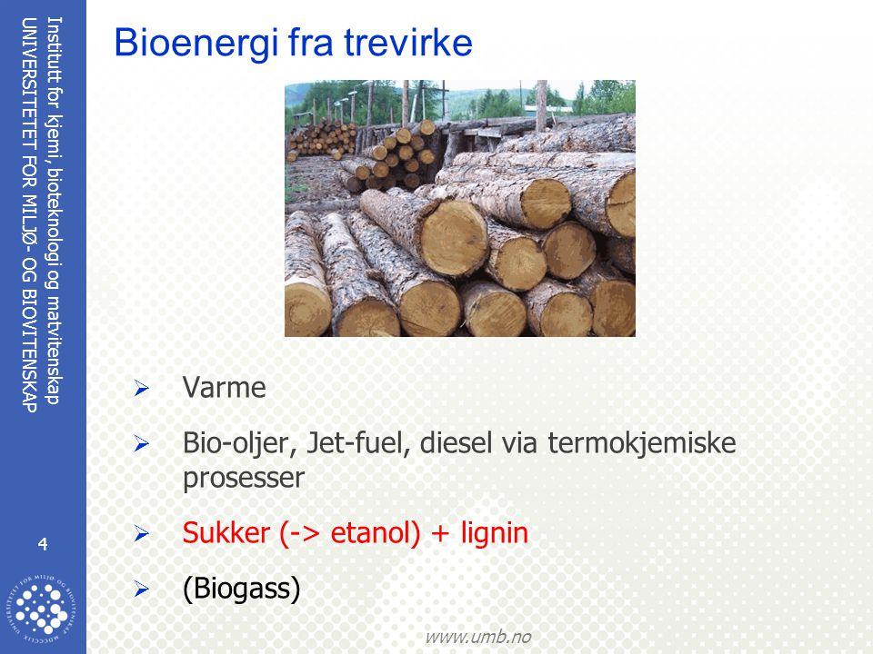 Institutt for kjemi, bioteknologi og matvitenskap 5 UNIVERSITETET FOR MILJØ- OG BIOVITENSKAP www.umb.no Nedbryting av trevirke (lignocellulose)