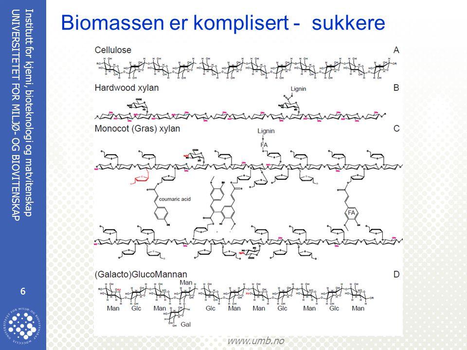 Institutt for kjemi, bioteknologi og matvitenskap 7 UNIVERSITETET FOR MILJØ- OG BIOVITENSKAP www.umb.no Biomassen er komplisert - sukkere