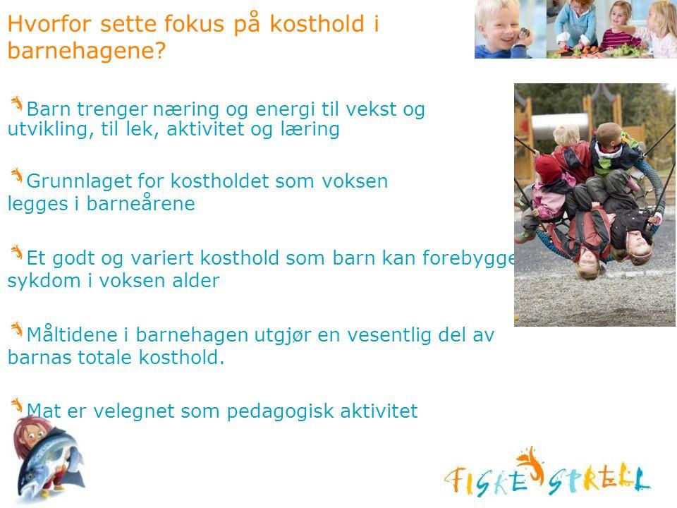Hvorfor sette fokus på kosthold i barnehagene? Barn trenger næring og energi til vekst og utvikling, til lek, aktivitet og læring Grunnlaget for kosth