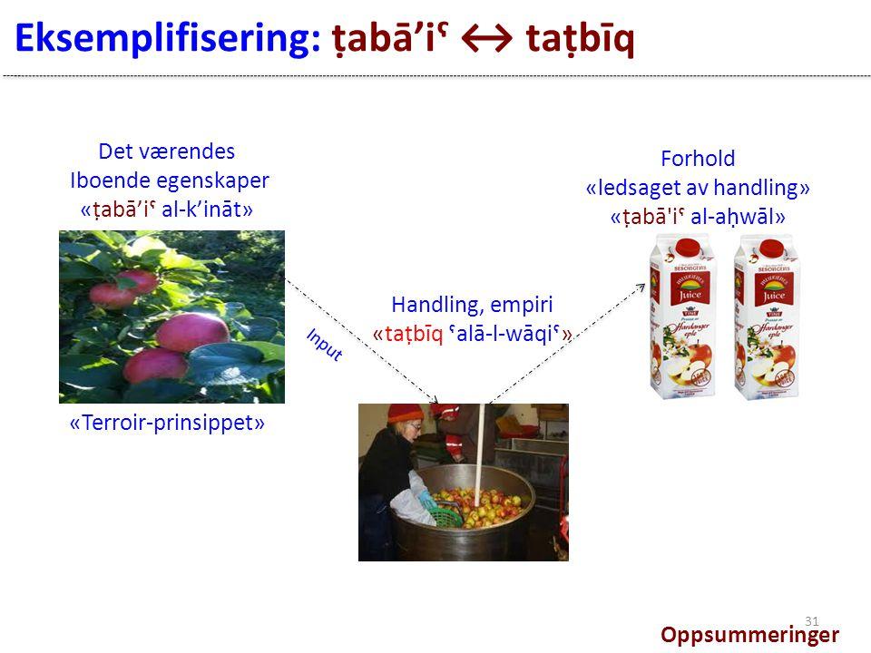 Eksemplifisering: ṭabā'iˤ ↔ taṭbīq Det værendes Iboende egenskaper «ṭabā'iˤ al-k'ināt» Input Forhold «ledsaget av handling» «ṭabā iˤ al-aḥwāl» Handling, empiri «taṭbīq ˤalā-l-wāqiˤ» «Terroir-prinsippet» Oppsummeringer 31