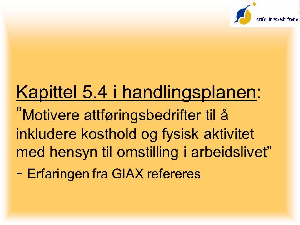 Kapittel 5.4 i handlingsplanen: Motivere attføringsbedrifter til å inkludere kosthold og fysisk aktivitet med hensyn til omstilling i arbeidslivet - Erfaringen fra GIAX refereres