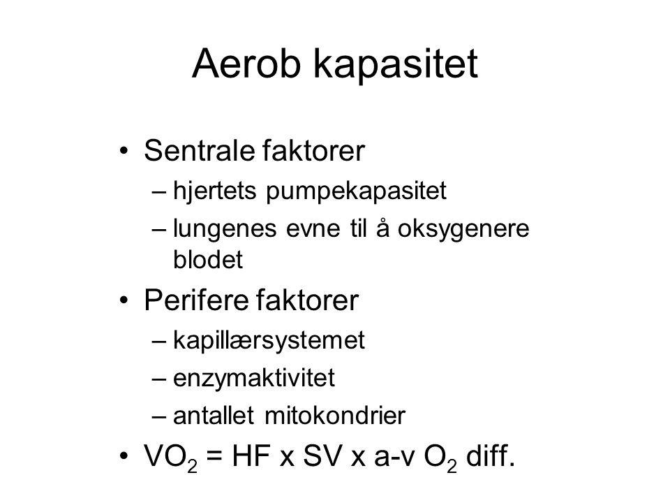 Aerob kapasitet •Sentrale faktorer –hjertets pumpekapasitet –lungenes evne til å oksygenere blodet •Perifere faktorer –kapillærsystemet –enzymaktivite