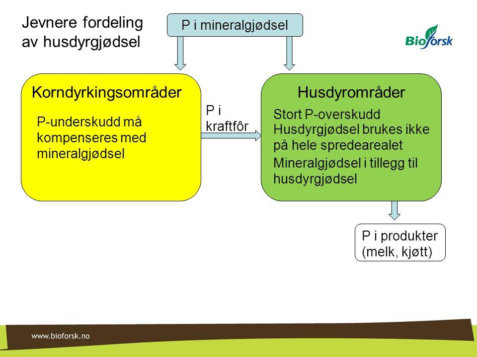 HusdyrområderKorndyrkingsområder P i mineralgjødsel P i kraftfôr P i produkter (melk, kjøtt) Stort P-overskudd Husdyrgjødsel brukes ikke på hele spred