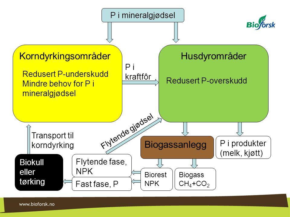 HusdyrområderKorndyrkingsområder P i mineralgjødsel P i kraftfôr P i produkter (melk, kjøtt) Redusert P-overskudd Redusert P-underskudd Mindre behov f