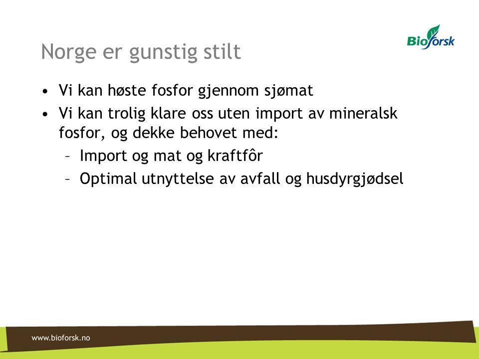 Norge er gunstig stilt •Vi kan høste fosfor gjennom sjømat •Vi kan trolig klare oss uten import av mineralsk fosfor, og dekke behovet med: –Import og