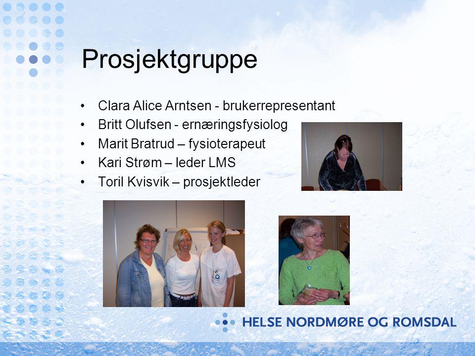 Prosjektgruppe •Clara Alice Arntsen - brukerrepresentant •Britt Olufsen - ernæringsfysiolog •Marit Bratrud – fysioterapeut •Kari Strøm – leder LMS •Toril Kvisvik – prosjektleder