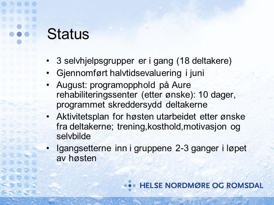 Status •3 selvhjelpsgrupper er i gang (18 deltakere) •Gjennomført halvtidsevaluering i juni •August: programopphold på Aure rehabiliteringssenter (ett