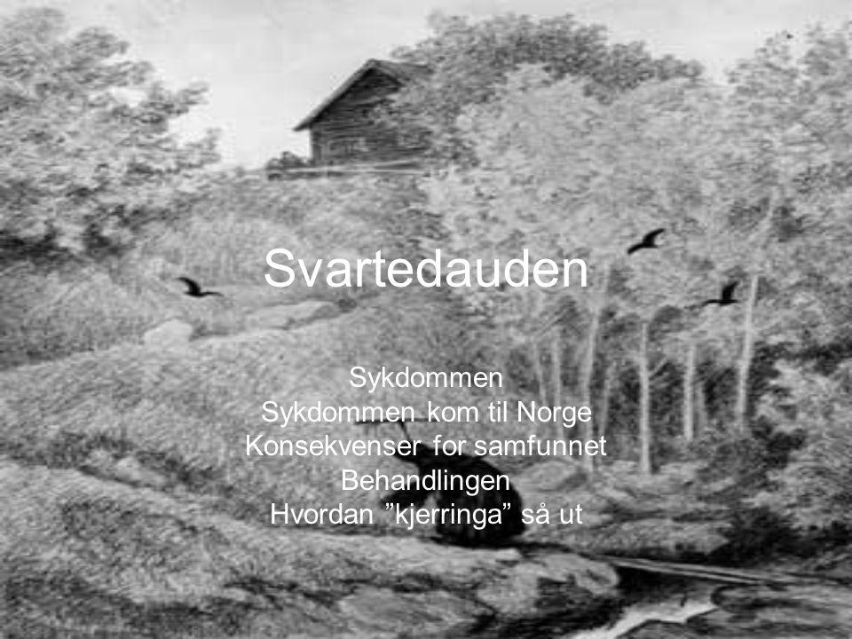 Svartedauden Sykdommen Sykdommen kom til Norge Konsekvenser for samfunnet Behandlingen Hvordan kjerringa så ut