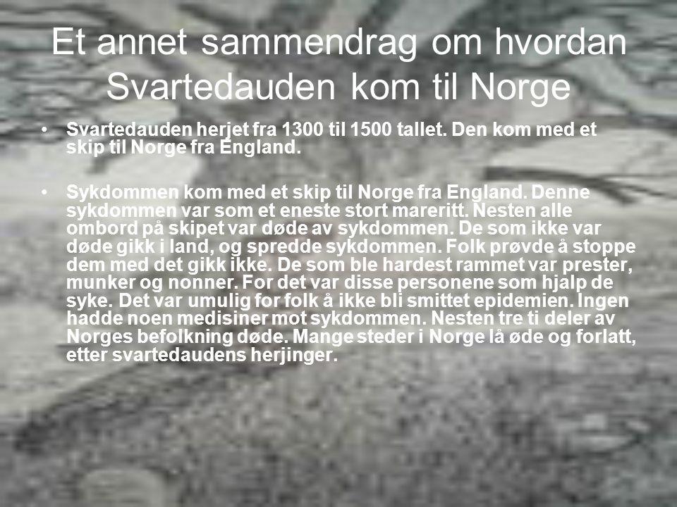 Et annet sammendrag om hvordan Svartedauden kom til Norge •S•Svartedauden herjet fra 1300 til 1500 tallet.