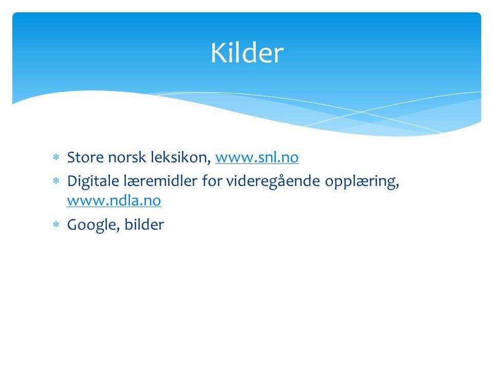 Store norsk leksikon, www.snl.nowww.snl.no  Digitale læremidler for videregående opplæring, www.ndla.no www.ndla.no  Google, bilder Kilder