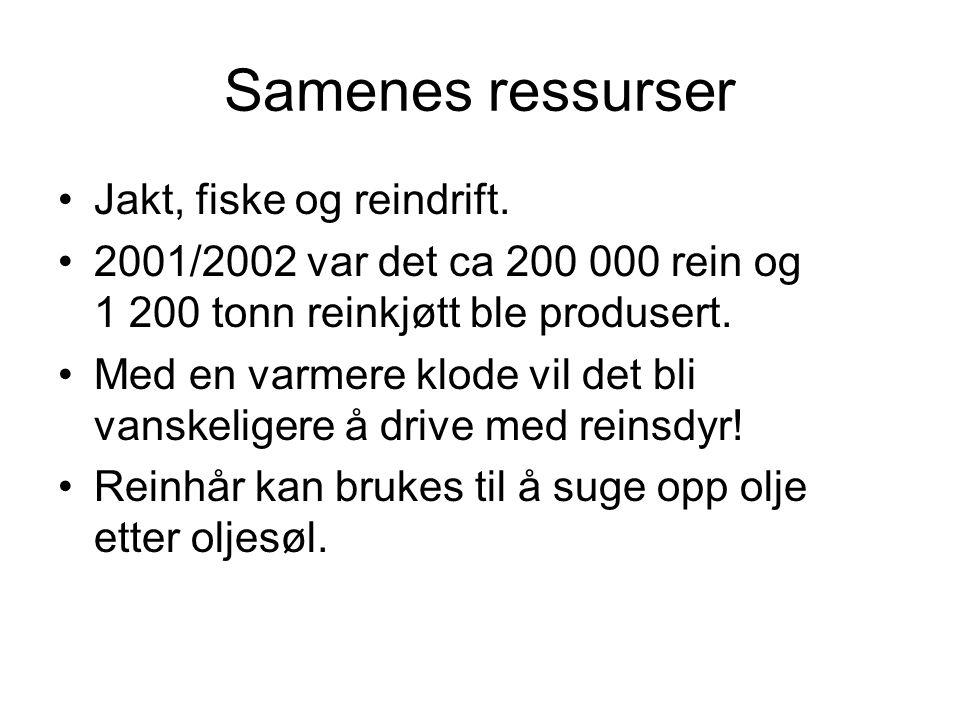 Samenes ressurser •Jakt, fiske og reindrift. •2001/2002 var det ca 200 000 rein og 1 200 tonn reinkjøtt ble produsert. •Med en varmere klode vil det b