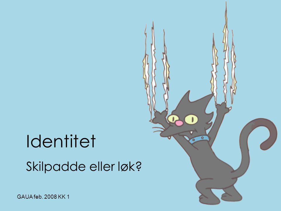 GAUA feb. 2008 KK 1 Identitet Skilpadde eller løk?