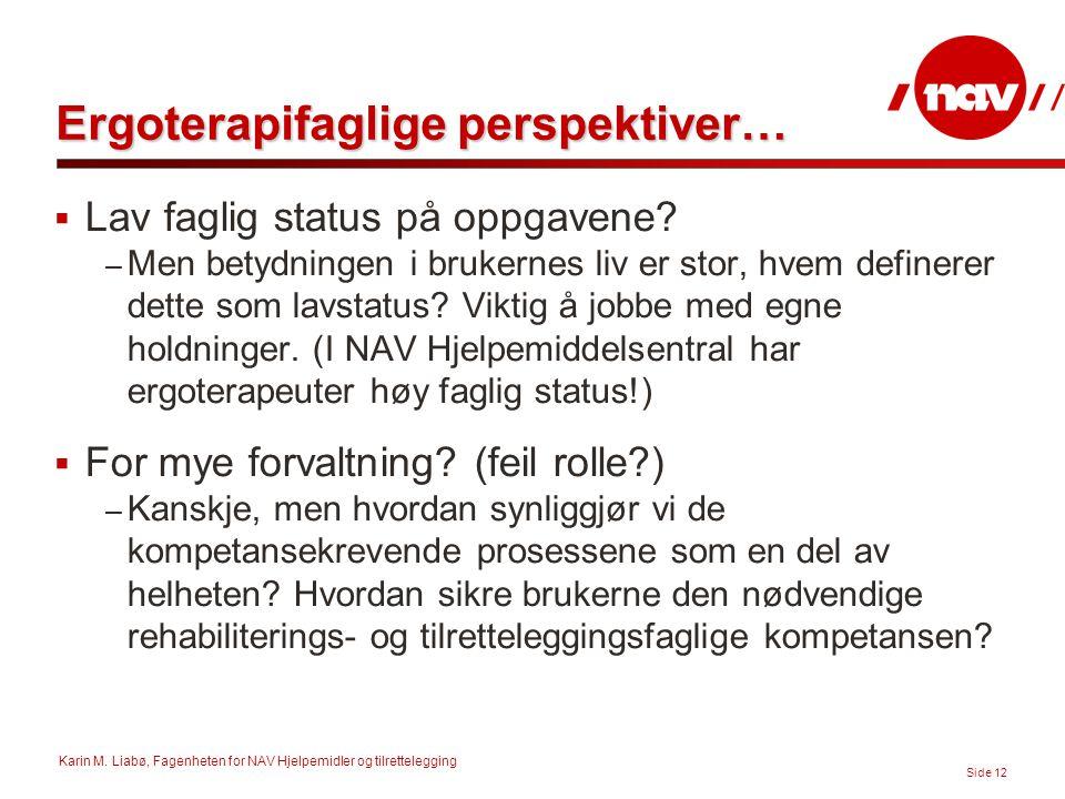 Karin M. Liabø, Fagenheten for NAV Hjelpemidler og tilrettelegging Side 12 Ergoterapifaglige perspektiver…  Lav faglig status på oppgavene? – Men bet