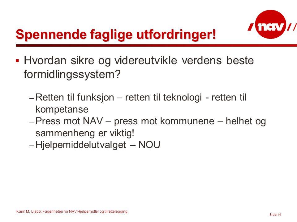Karin M. Liabø, Fagenheten for NAV Hjelpemidler og tilrettelegging Side 14 Spennende faglige utfordringer!  Hvordan sikre og videreutvikle verdens be