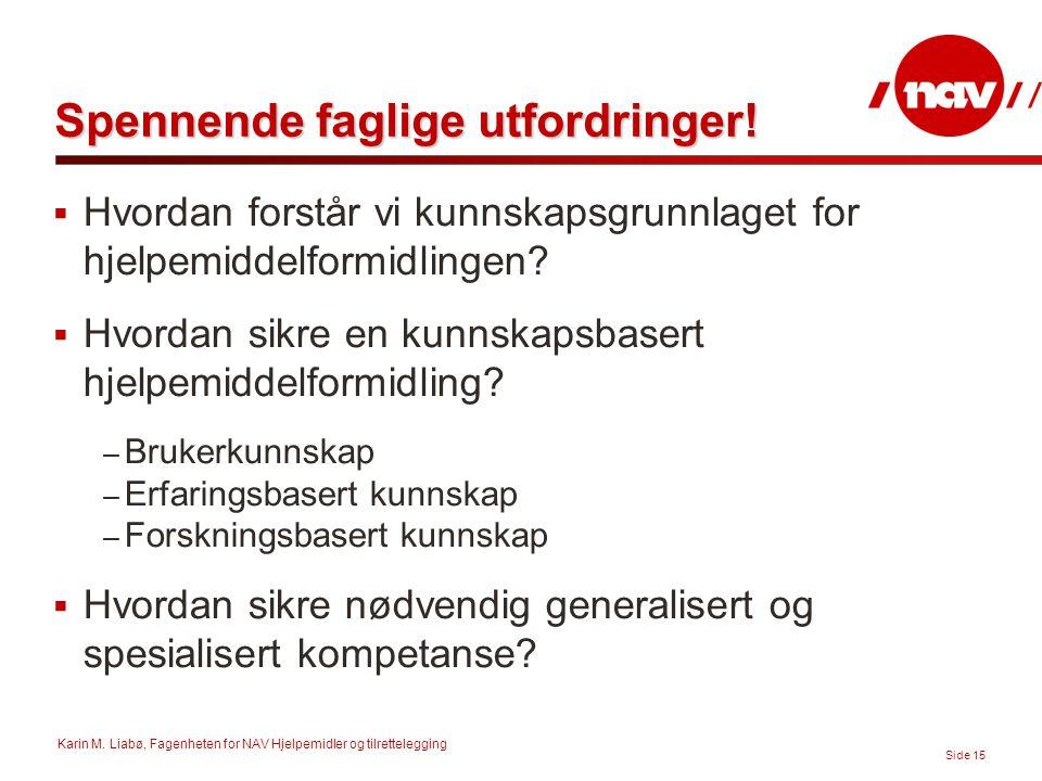 Karin M. Liabø, Fagenheten for NAV Hjelpemidler og tilrettelegging Side 15 Spennende faglige utfordringer!  Hvordan forstår vi kunnskapsgrunnlaget fo