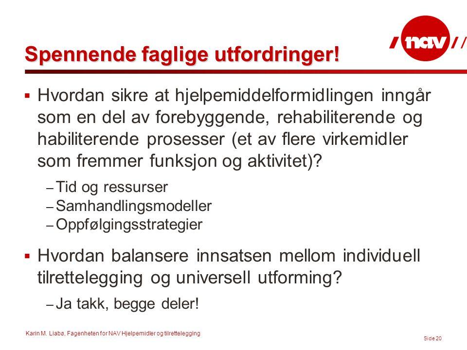 Karin M. Liabø, Fagenheten for NAV Hjelpemidler og tilrettelegging Side 20 Spennende faglige utfordringer!  Hvordan sikre at hjelpemiddelformidlingen