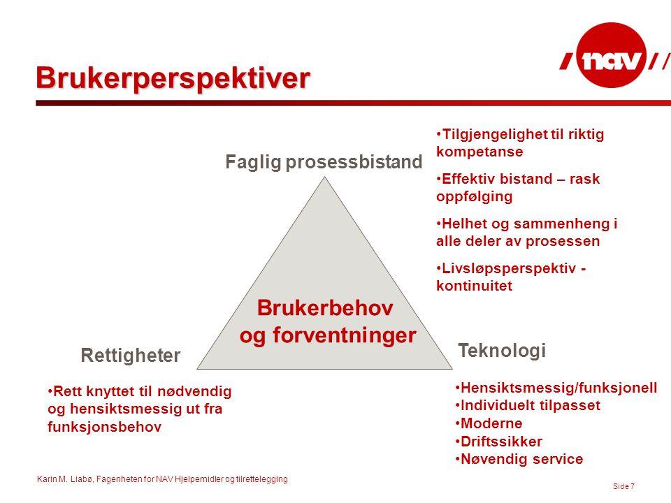 Karin M. Liabø, Fagenheten for NAV Hjelpemidler og tilrettelegging Side 7 Brukerperspektiver Brukerbehov og forventninger Faglig prosessbistand Teknol