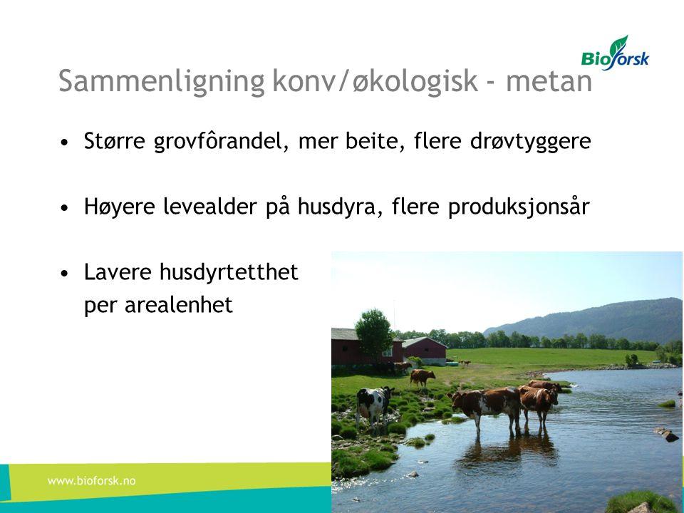 Sammenligning konv/økologisk - metan •Større grovfôrandel, mer beite, flere drøvtyggere •Høyere levealder på husdyra, flere produksjonsår •Lavere husd