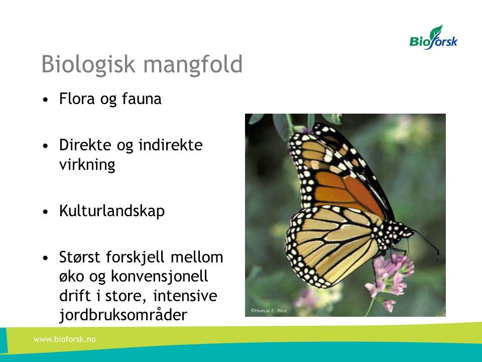 Biologisk mangfold •Flora og fauna •Direkte og indirekte virkning •Kulturlandskap •Størst forskjell mellom øko og konvensjonell drift i store, intensive jordbruksområder