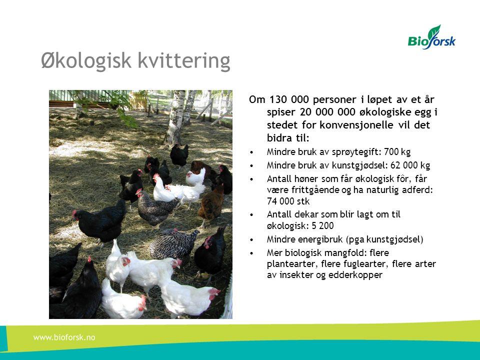 Økologisk kvittering Om 130 000 personer i løpet av et år spiser 20 000 000 økologiske egg i stedet for konvensjonelle vil det bidra til: • Mindre bru